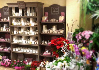 collines-de-provence-boutique-bea-fleurs-nice