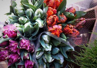 fleuriste-nice-beafleurs-tulipe