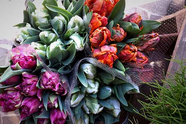 fleuriste nice beafleurs tulipe b a fleurs. Black Bedroom Furniture Sets. Home Design Ideas