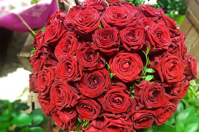 rose rouge fleuriste nice beafleurs fleurs b a fleurs. Black Bedroom Furniture Sets. Home Design Ideas