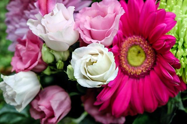 lisianthus-fleurs-bouquet-couleur
