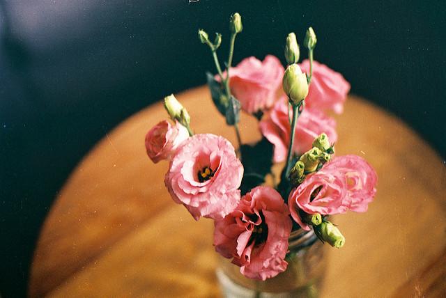 lisianthus-interieur-fleurs-vase